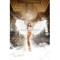 Back in Heaven Монокини белый из тюлевой ткани в точечку с кружевными аппликациями