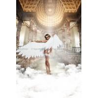 Back in Heaven Чулки белые с задним швомOS (4246)
